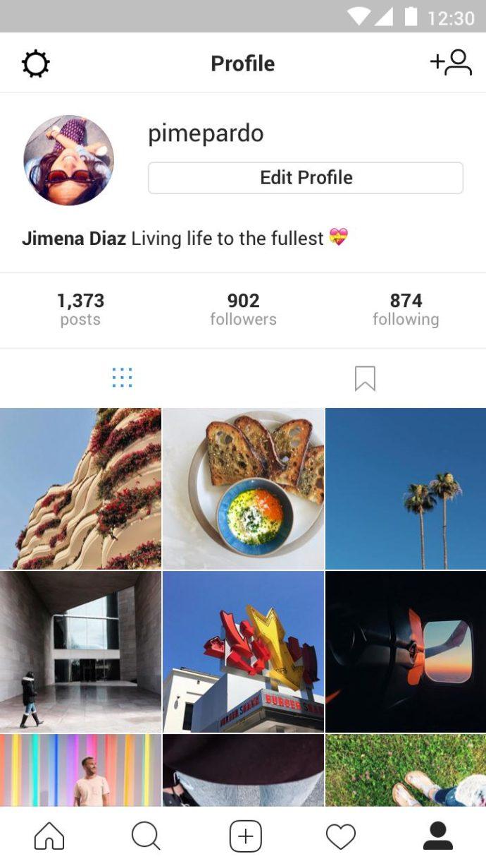 Das persönliche Profil bei Instagram Lite