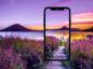 Smartphone Fotografie in der Natur